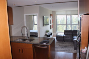 2 Bedroom Condo, Coquitlam Evergreen Line