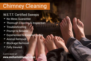 CHIMNEY CLEANING and CHIMNEY INSPECTIONS – PROFESSIONAL SERVICES