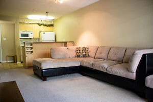 FULLY Furnished One Bedroom