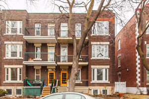 **PROMOTION** Bright and Beautiful 9 1/2 Outremont