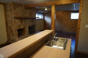 Newly renovated Lower-level suite in Deer Ridge