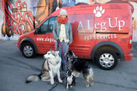 Dog Day Care Driver - Mornings, Late Afternoons or Both