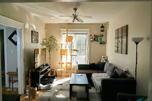 3.5 Bedroom Duplex for Rent / Downtown and close to everything!