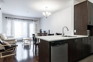 Furnished, Downtown, Near Metro, Old Mtl, Shops (March 2017 )