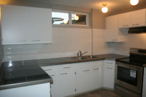 2 Bedroom lower suite Foothills *internet and utilities included
