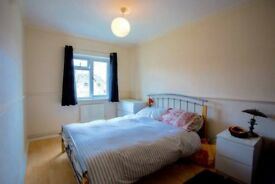 Double rooms in up and coming Canning Town. Close to Canary and Stratford. Must see!!