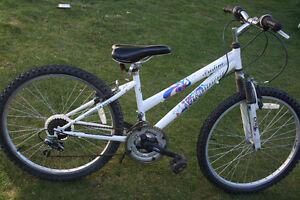 "20"" / 24"" wheels mountain bike for youth"