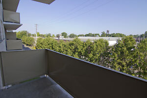 Scenic views, updated units! 1 & 2 BDRM apts for rent!