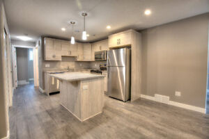 BRAND NEW!! 2 Bedroom Basement Suite Available Now!