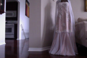 Beautiful One of a Kind Gown