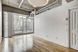 Downtown Condo with Gargage Parking