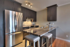 NEW PRICE  Ile Perrot (15 min to West Island) Flexible occupancy West Island Greater Montréal image 9