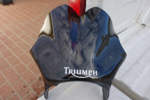 National Cycle F-18 Triumph Flyscreen