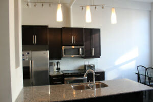 Fully Furnished 900 sq ft Condo at Arrow Lofts
