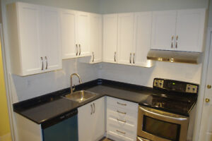 GORGEOUS, MODERN 1 BEDROOM APARTMENT (Wilson and Sherman)