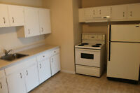 Nice apartment. Perfect RIVERVIEW location!  July free!
