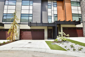 NEW 4 bedroom Townhome w/ AMAZING mountain and valley view!