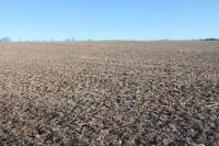 FARM LAND, WORK LAND, APPROX 215 RURAL ACRES!