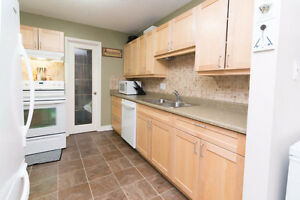3 bedroom renovated Millwoods 199,900