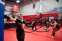 Free Kickboxing or Kung Fu Class
