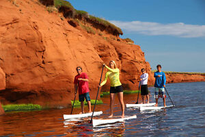 Planche a pagaie , Surf a pagaie ,Paddleboard, SUP