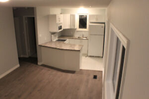 Unique Duplex Central Mountain- Fully Renovated 2 Bedroom