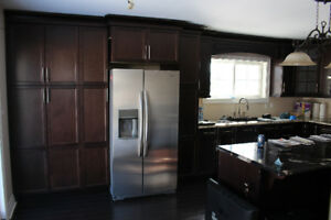 newly renovated clean 2 bedroom home for rent