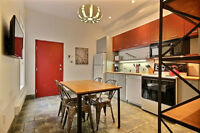 Beautiful renovated condo near McGill campus!