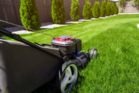 Lawn Mowing $20 - Lawn Care Services Available