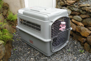 Petmate Sky Kennel for Pets from 70 to 90-Pound, Light Gray