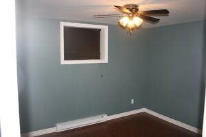 One Bedroom Basement Apartment in Paradise St. John's Newfoundland image 5