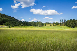 Valley Acreage With Lake-Views