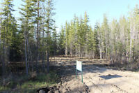 MLS 535952 - Large Open Lot at Turtle Lake Lodge ready for you!