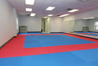 Martial  Arts Space For Rent