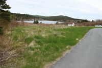 1.18 acres on a pond 40 mins from St. John's