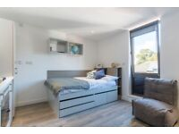 STUDENT ROOM TO RENT IN CARDIFF, STUDIO WITH PRIVATE BATHROOM, PRIVATE KITCHEN AND PRIVATE GYM