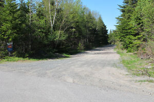 Approx 6.12 acres Duffs road Ext Holyrood St. John's Newfoundland image 1