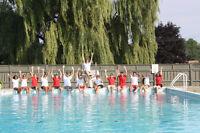 Lifeguard - Surveillant Sauveteur