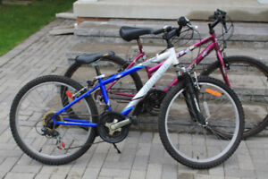 Two bikes for only $50