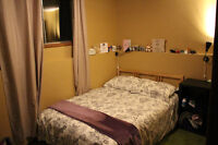 Spacious double room available now for rent in Banff