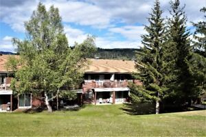 Affordable 2 Bedroom Condo For Sale In Elkford BC