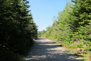 Approx 6.12 acres Duffs road Ext Holyrood St. John's Newfoundland image 2