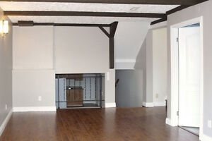 Renovated 2 Bedroom Walkout Unit available Nov 1 or 15, or Dec 1 Kitchener / Waterloo Kitchener Area image 1
