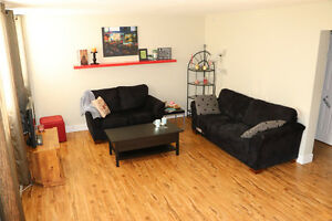 2 Bedroom + 1 Bathroom Fully Furnished Apartment Available