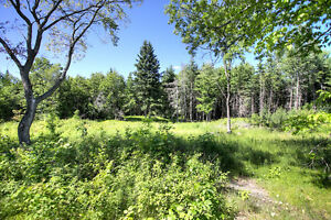 REDUCED PRICE! PANORAMIC VIEW ON 10 ACRES, BANCROFT ON Peterborough Peterborough Area image 3
