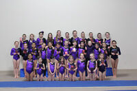 Looking for Competitive and Recreation Coaches