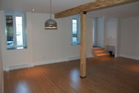 New appartme 5 minutes walk from Rosemont and Beaubien stations.