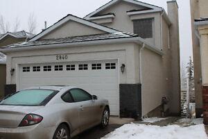 Walkout Basement Suite with 2 Bedrooms in Signal Hill