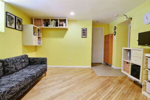 Charming One Bedroom Apartment One Minute Walk to McGill
