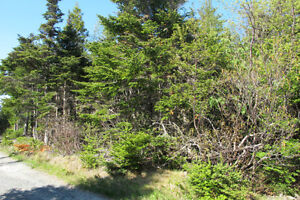 Approx 6.12 acres Duffs road Ext Holyrood St. John's Newfoundland image 3